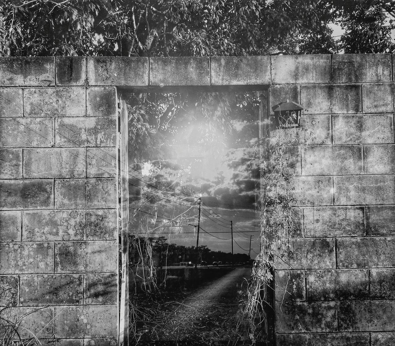 Window Day Built Structure Architecture Building Exterior Outdoors No People Tree Break The Mold Double Exposure Playing With Effects Sunlight Doorway Walkway Black & White Mymind EyeEmNewHere Art Is Everywhere TCPM Not Strange To Me Cut And Paste Freshness Sky Open Doorway Fun BYOPaper!