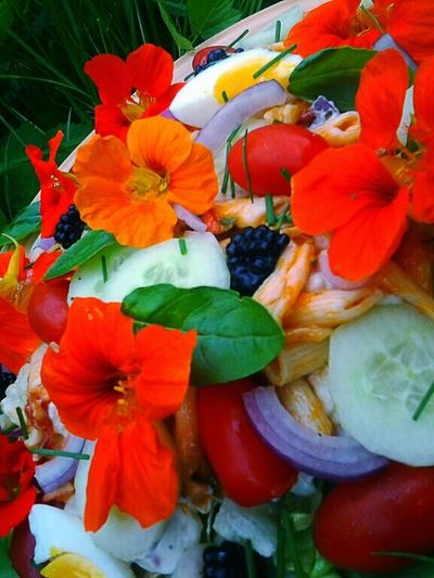 Happy Salad Flower Power Flowers From My Garden Edible Flowers Open Edit Food Porn Awards