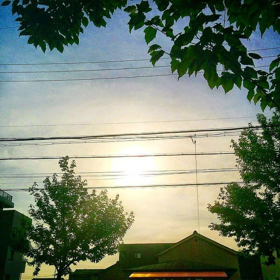 💙 お早うございます🎶🙋 Good Morning💜 (* ´ ▽ ` *)ノ * * * 今日も晴れです☀(20ºc)🎶😊 Mostly Sunny🎶😃 * * Morning_glow Chaoyang朝陽 太陽sun nagoyasky空 Japan日本Nature自然綺麗爽やかRefreshing 💙 morningsun_Japan_nagoya_ mitu