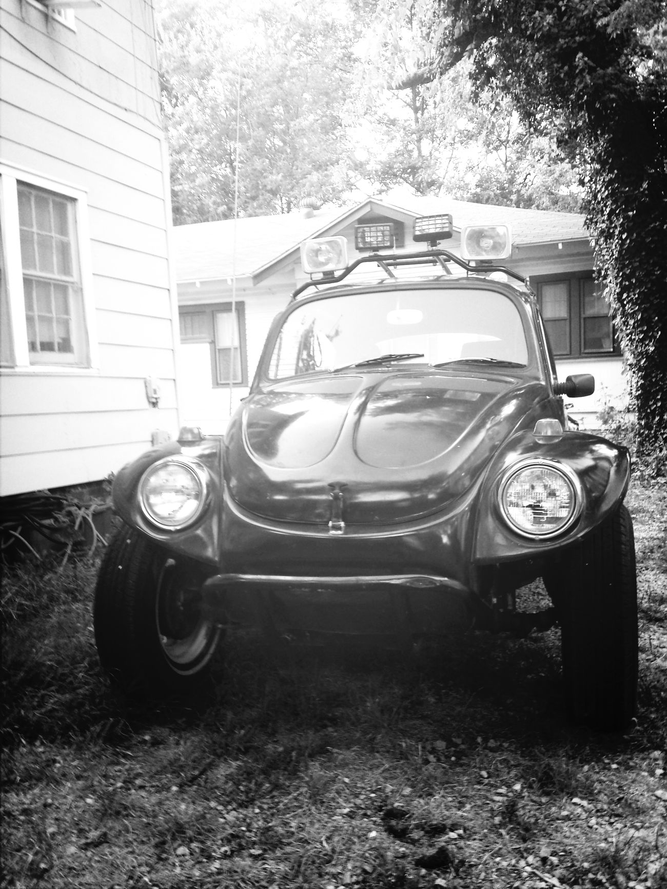 Vw Bug Classic Bug Baja Beetlejuice, my 65 Baja bug