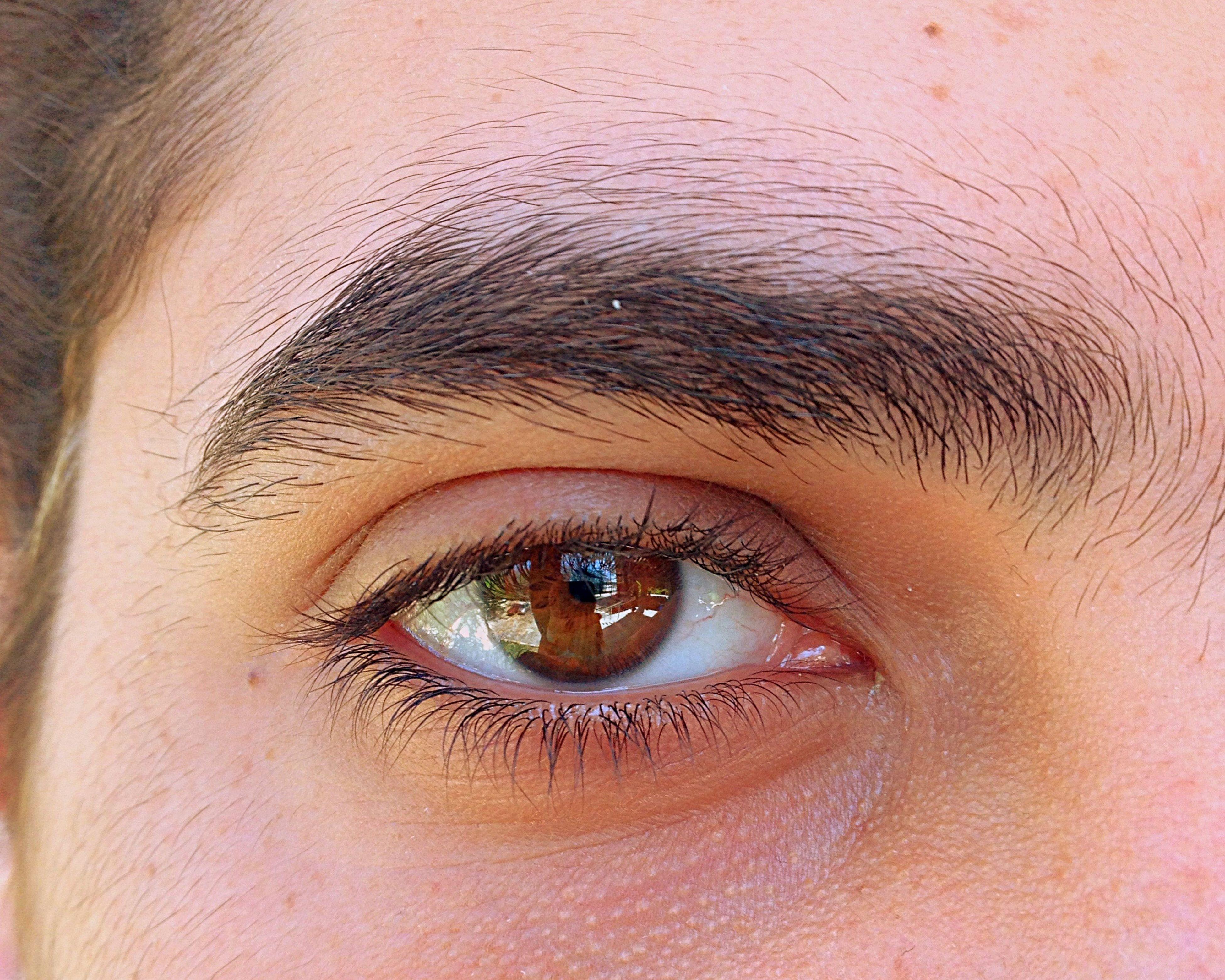 human eye, eyelash, close-up, looking at camera, portrait, full frame, eyesight, sensory perception, extreme close-up, human face, backgrounds, eyebrow, extreme close up, part of, iris - eye, human skin, eyeball