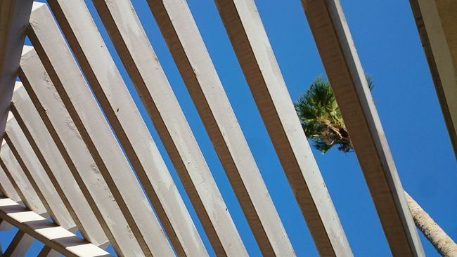 Taking Photos Hanging Out Check This Out Lookingup Look Up Minimalobsession Showcase: February Sky Getting Inspired Getting Creative Architecture_collection Pattern, Texture, Shape And Form Walking Around The City  Walking Around Enjoying Life Learn & Shoot: Simplicity Skyporn