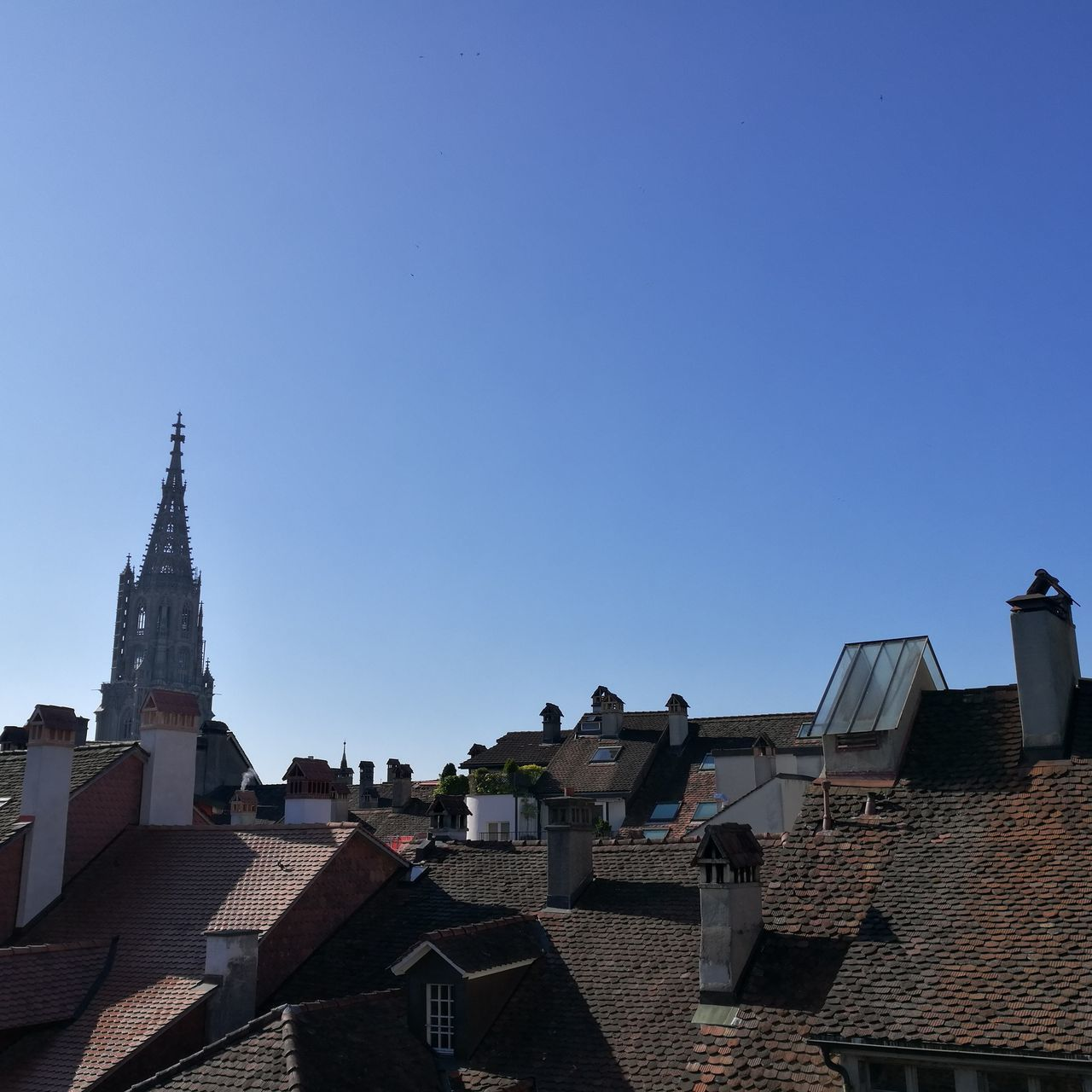 Day Sky City Clear Sky Architecture Travel Destinations No People Downtown Bern Berner Münster Münster Switzerland