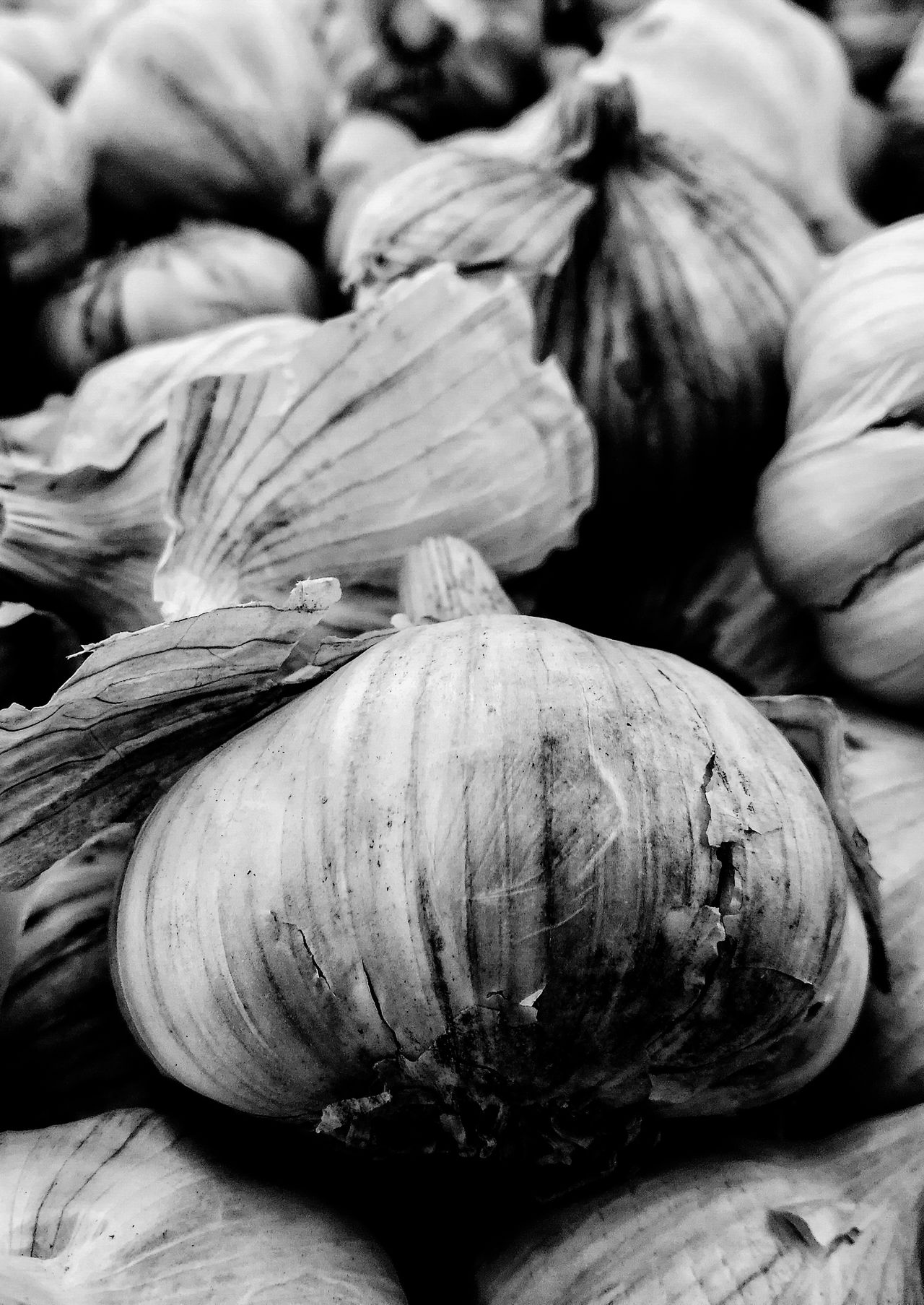 Backgrounds Food And Drink Welcome To Black Focus On Foreground Garlic Garlic Bulb Garlic Clove Black & White