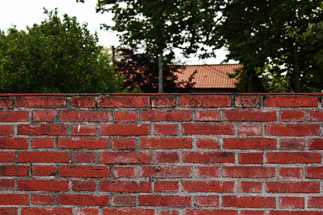 Wall Brick Wall Brick Bricks Brick Building Brickwall Red Brick Wall Red Brick Walls Wall Of Bricks Separation Separate Segregation  Beyond The Border Beyond The Wall Brickporn Brick Walls Brickwork