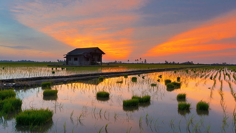 Architecture Beauty In Nature Calm Canal Cloud Cloud - Sky Cloudy Dramatic Sky Growth Idyllic Majestic Nature No People Orange Color Outdoors Plant Reflection Scenics Sky Standing Water Sunset Tranquil Scene Tranquility Water