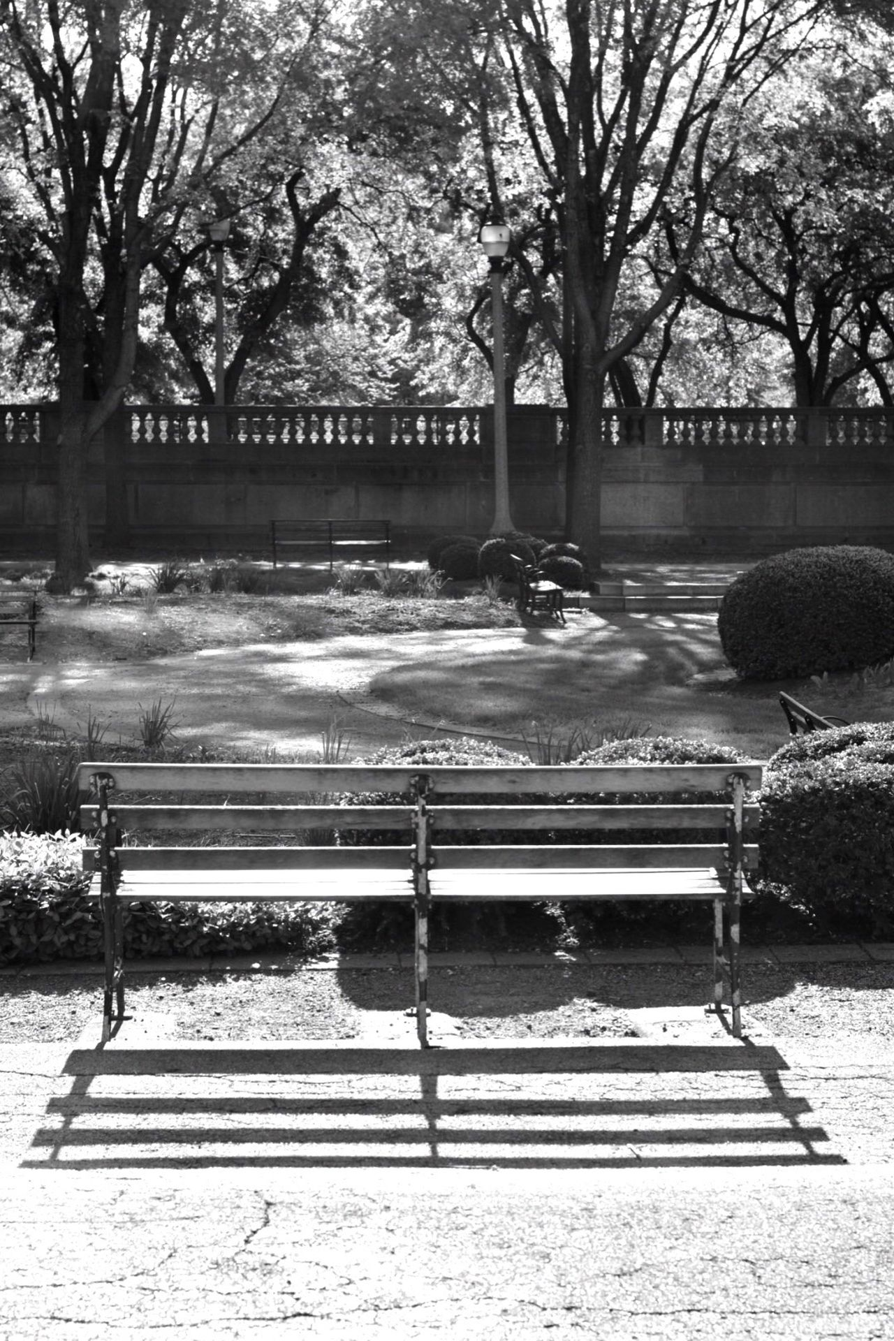 Bench in the Park Outdoors No People The Street Photographer - 2017 EyeEm Awards Blackandwhite Neighborhood Map