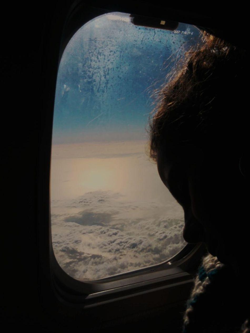 Sleeping Beauty Flyaway