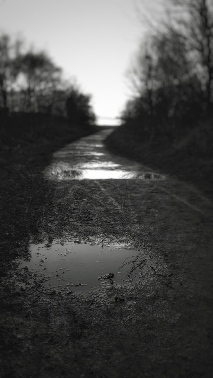water, puddle, outdoors, reflection, day, tree, no people, nature, road, clear sky, sky, close-up