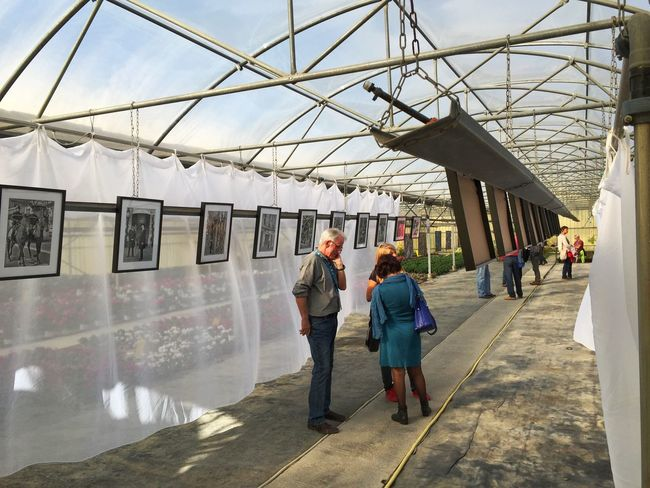 encontres de la photographie 2015 Exposition Photography