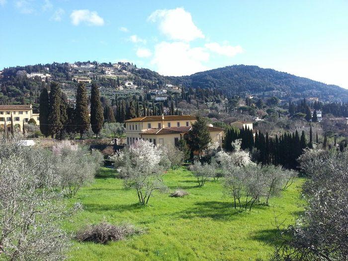 S. Domenico Fiesole Firenze Tuscany