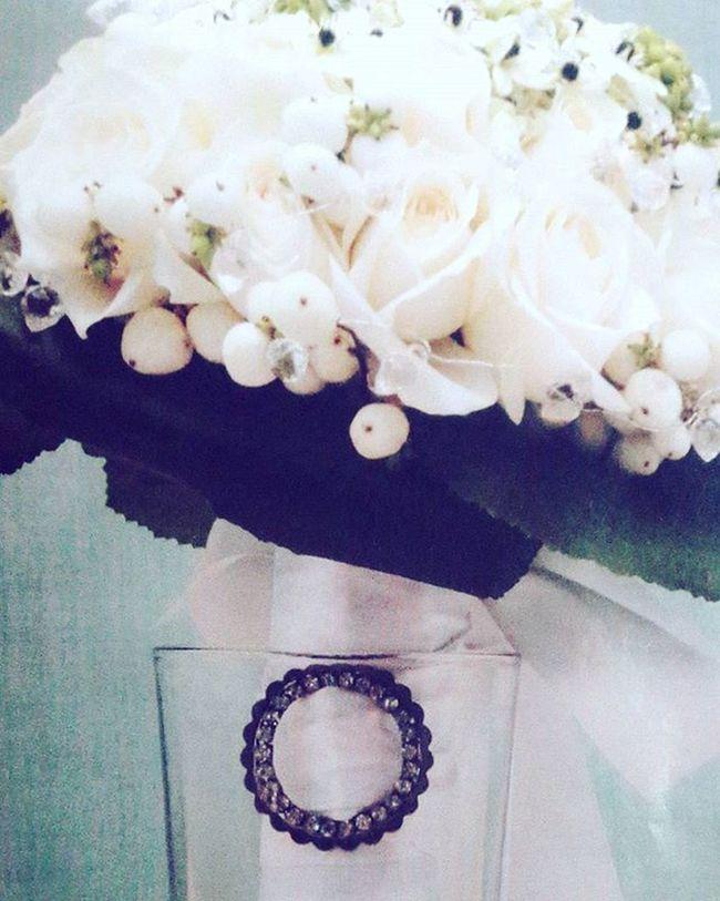 Star of bethlehem white flowers 💐 creation flora lines Bethlehem Whiteflowers Flowers Lovewhite Vintage Vintagestyle Nature Loveofflowers Loveit Instagram Like4like Likesflowerslikes