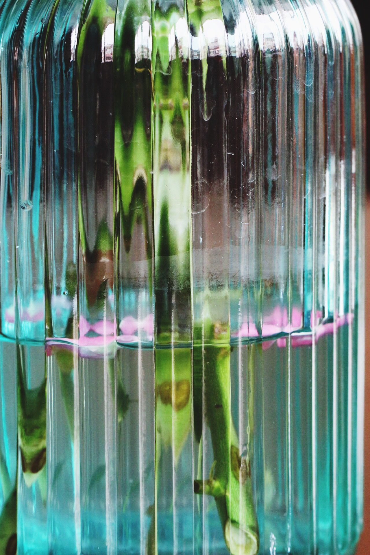 Looking Water Canon70d Hello World City Life Plant Glass