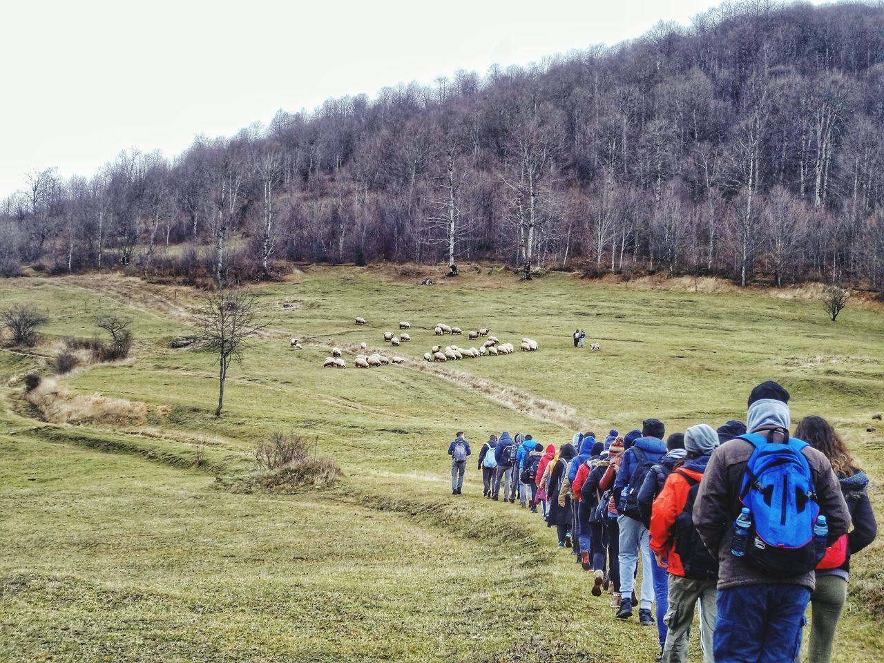 Turkey Karadeniz Blacksea Türkiye Giresun Ordu GUDAKT Dağcılık Mountain Discipline Trekking Singleline Yürüyüş Hiking