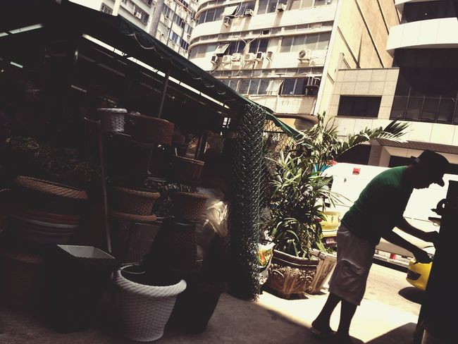 Man at work in a street gardening store. One Person Person Store People Real People Men Adult One Man Only Day Vintage Retro Pots Gardening DIY Flowers Commerce Plants