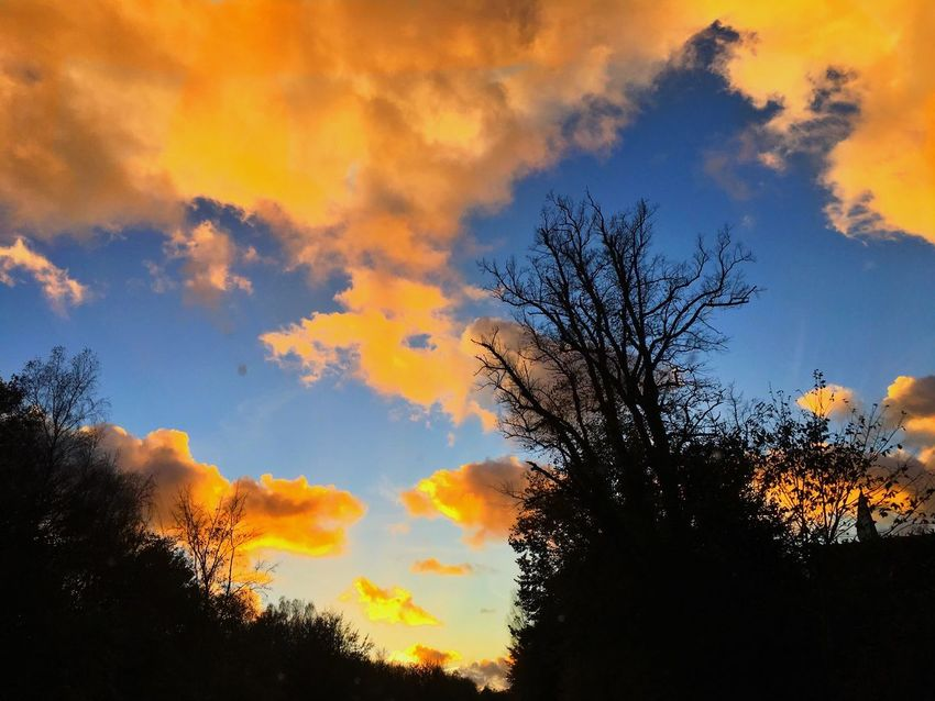 Beautifull autumn sky Sky Beauty In Nature Orange Color Nature Cloud - Sky Landscape