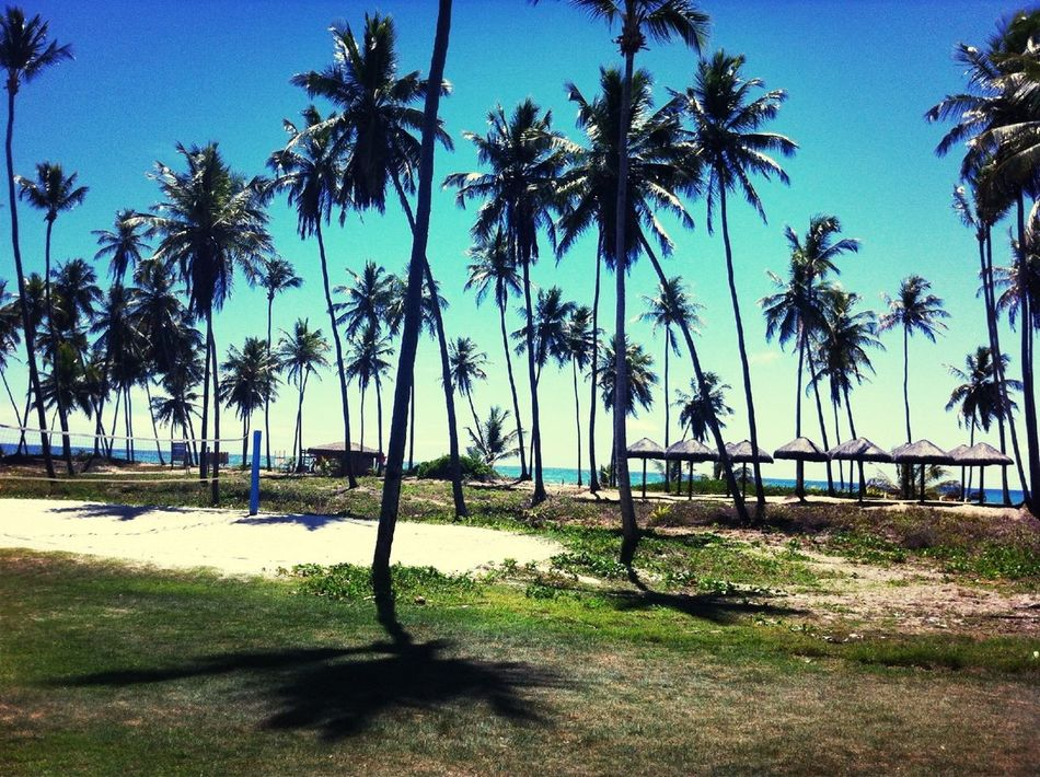 Piscina ou praia????