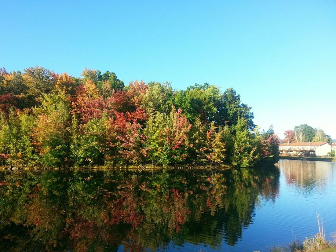 Can every day be fall, please? Landscape_Collection Water_collection Fall_collection Nature_collection