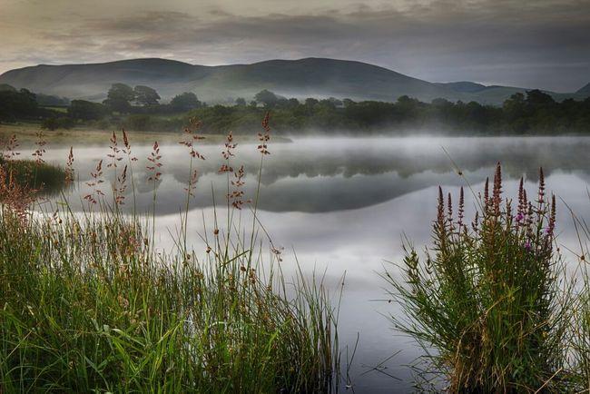 EyeEm Best Shots - Landscape EyeEmBestShots-Reflections Landscape_Collection Landscapes