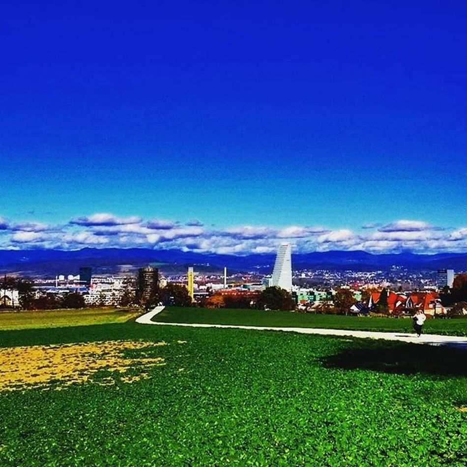 I love this city I love this view Baselbuzz Basel Rochetower Fields Greengrass Bluesky View Home Yellow Clouds Shadows Mountains City Walking Bruderholz Colourautumn Autumn Colourmeautumn Switzerland Instagood Instadaily Love Like4like Tagsforlikes Cute girl fun igers igersoftheday pictureoftheday
