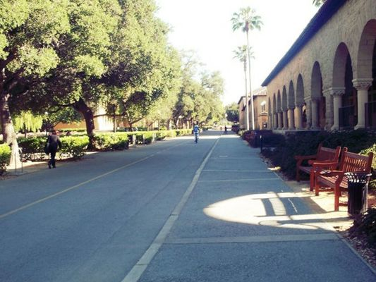 Stanford University at Palo Alto by Kimberly Evangelista