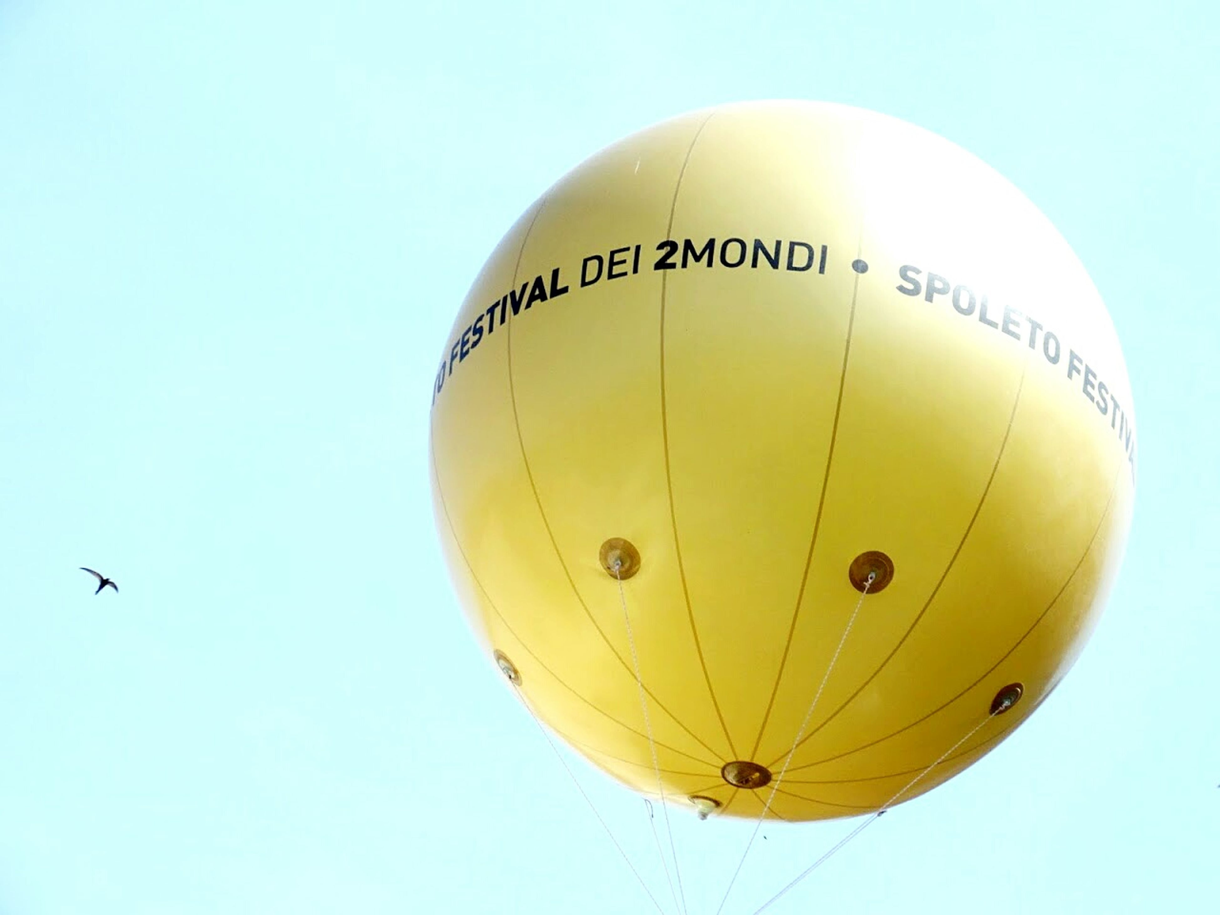 flying, low angle view, mid-air, clear sky, copy space, hot air balloon, parachute, transportation, bird, outdoors, adventure, air vehicle, animal themes, sky, blue, animals in the wild, no people, airplane, yellow, day