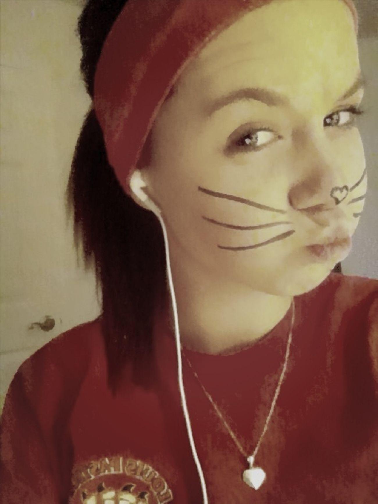Im A Cat