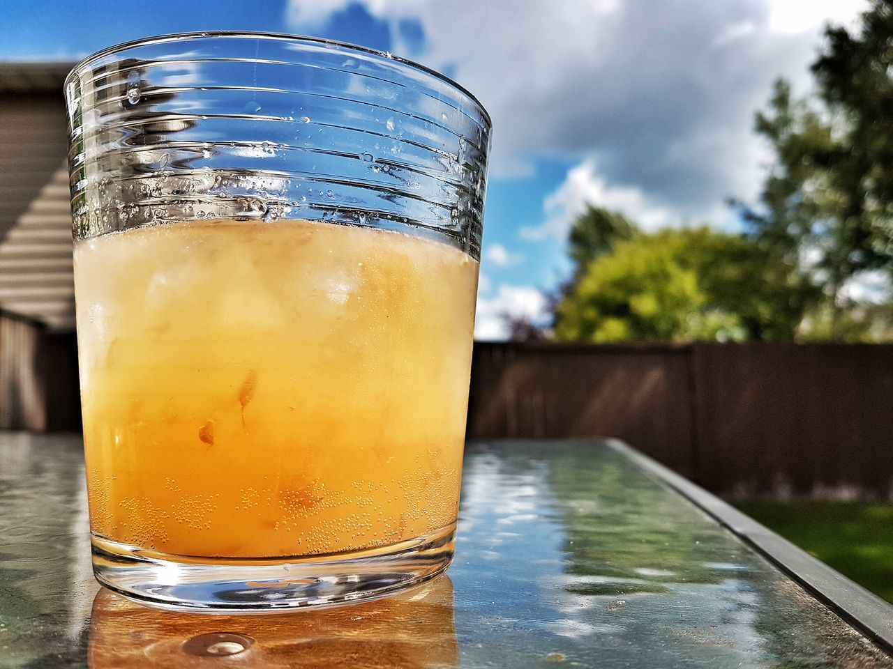 Paloma Paloma Coctail Coctail Hour Tequilla Unwind Relaxing Relax Backyard Drink Drinking Highball
