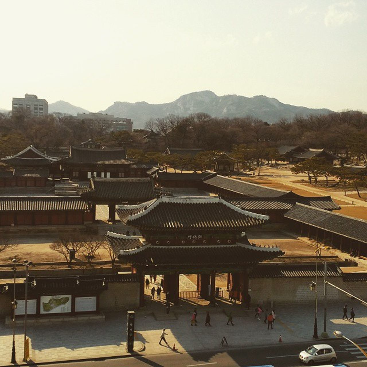 Fromroof Seoul Korea View Spring Duringduty Duty Rest Changgyeonggung Palace Traditional Past Josundynasty Dynasty 창경궁 서울 근무 휴식 봄