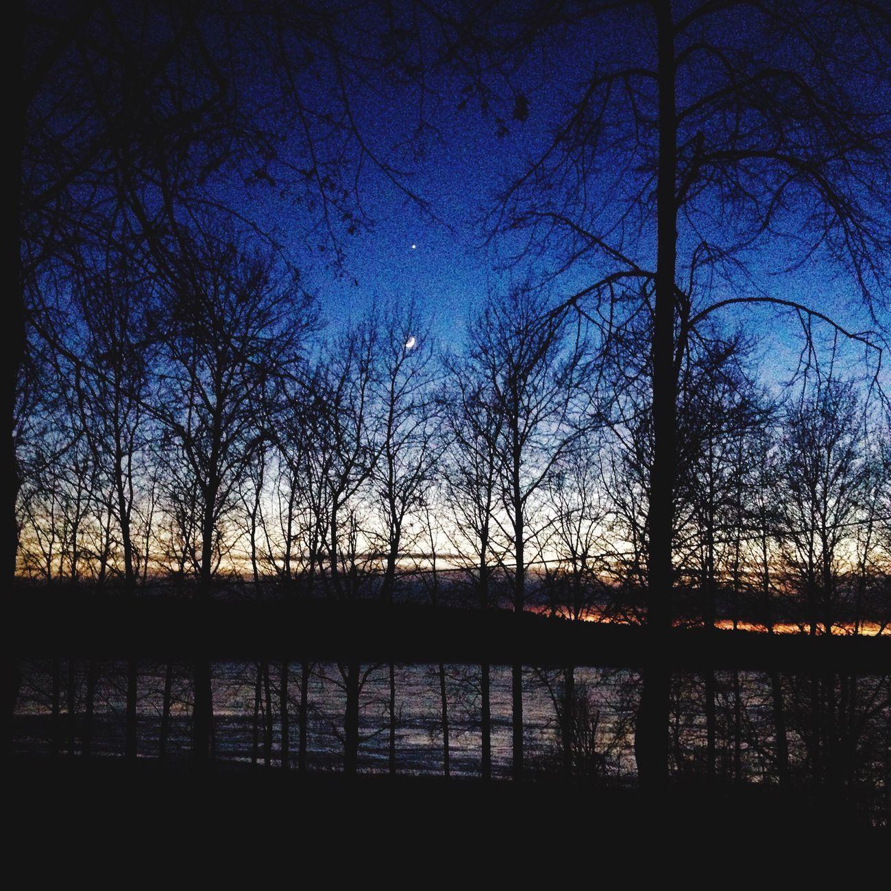 Tree Sunset Beauty In Nature Lake Dark First Eyeem Photo