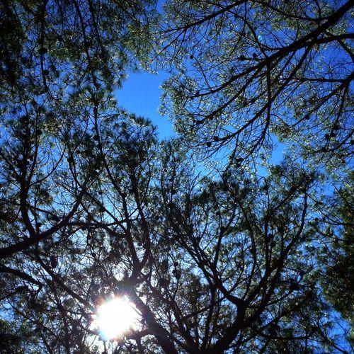 Sardinia skies #Italy