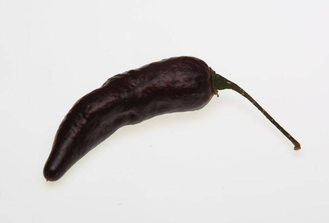Pimenta da Neyde black Chili, chili pepper, Capsicum annuum Black Capsicum Chili  Chili Pepper Chilipeppers No People Pimenta White Background