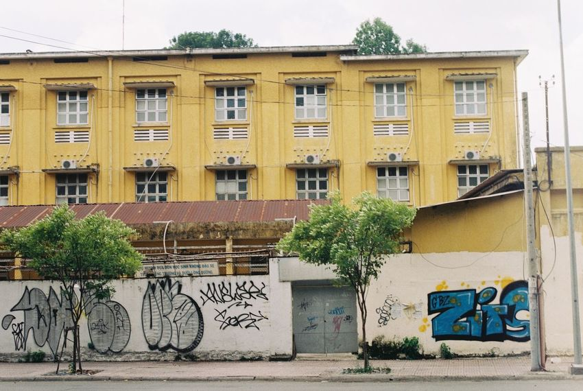 Graffiti Building Exterior Architecture Built Structure Street Art Outdoors Façade Travel Destinations Day Multi Colored Tree No People City Sky Film Photography Nikkor 500mm F8 Nikkormat Analogue Photography Film35mm