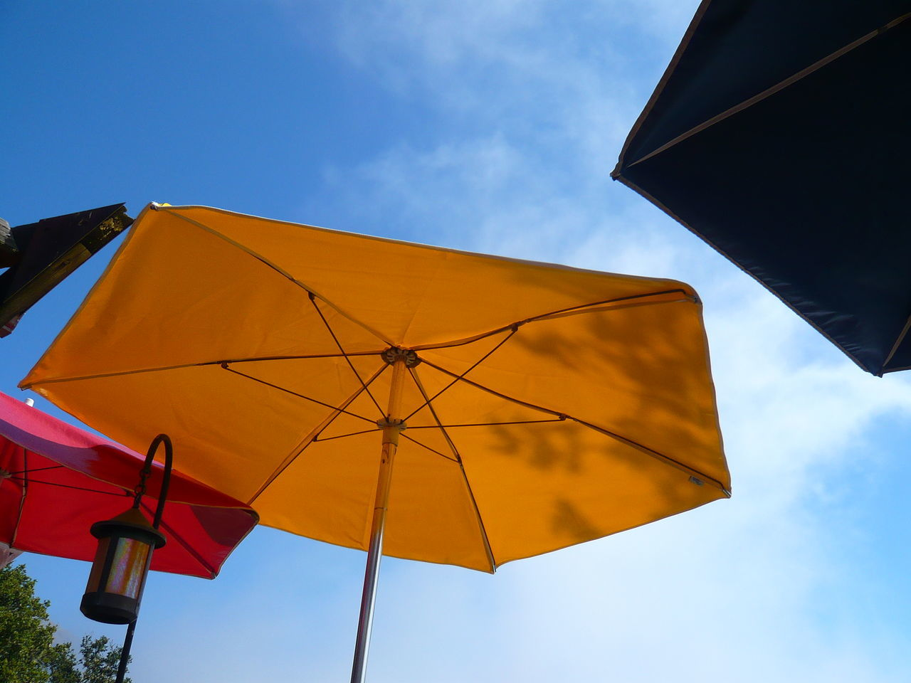 Beautiful stock photos of umbrella, Beach Umbrella, Blue, Canopy, Day