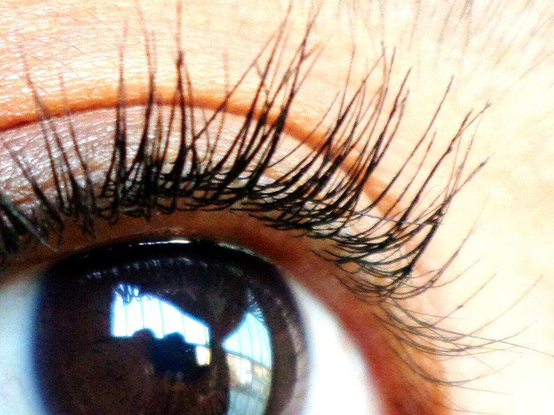 Ojo Human Body Part One Person Human Eye Iris - Eye Women Day Lonly Day