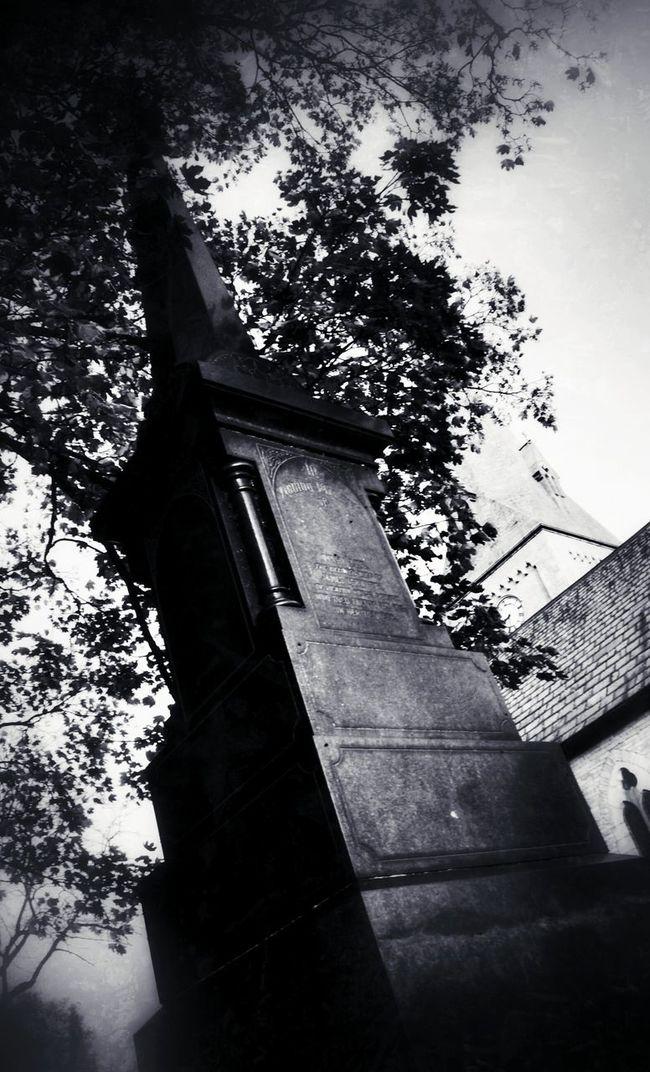 Blackandwhite Graveyard Beauty Bw_collection Eye4black&white  NEM Black&white