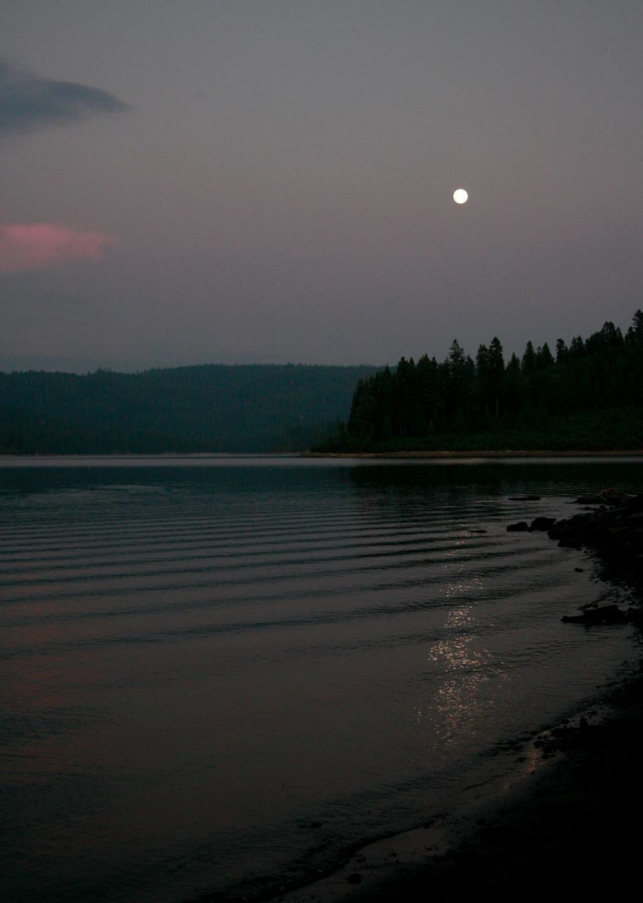 moon, night, full moon, sky, nature, scenics, beauty in nature, tranquil scene, tree, tranquility, reflection, outdoors, no people, water, moonlight, sunset, astronomy, half moon, crescent, space