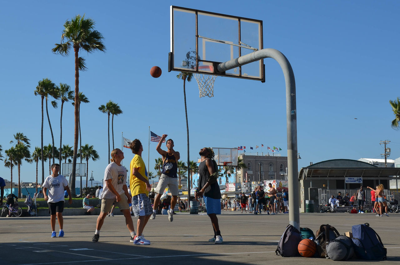 Activity Basketball - Sport Basketball Hoop Basketball Player California California Dreaming Challenge Clear Sky Court Day Friends Friendship Fun Jumping Leisure Activity Lifestyles Los Angeles, California Palm Tree Playing Sport Sports Team Sportsman Tree Venice Beach Winning