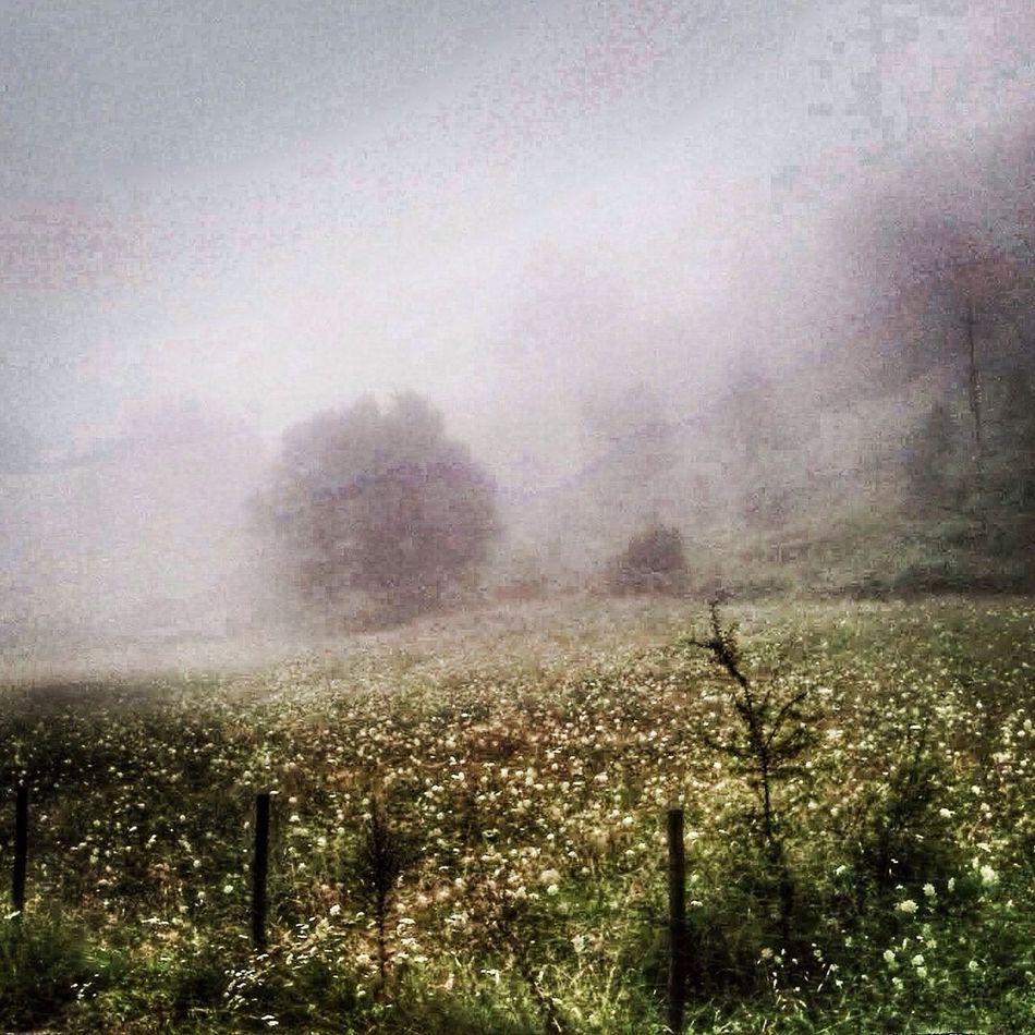 Fog Eye Em Nature Lover Water Mountain Enjoying Life