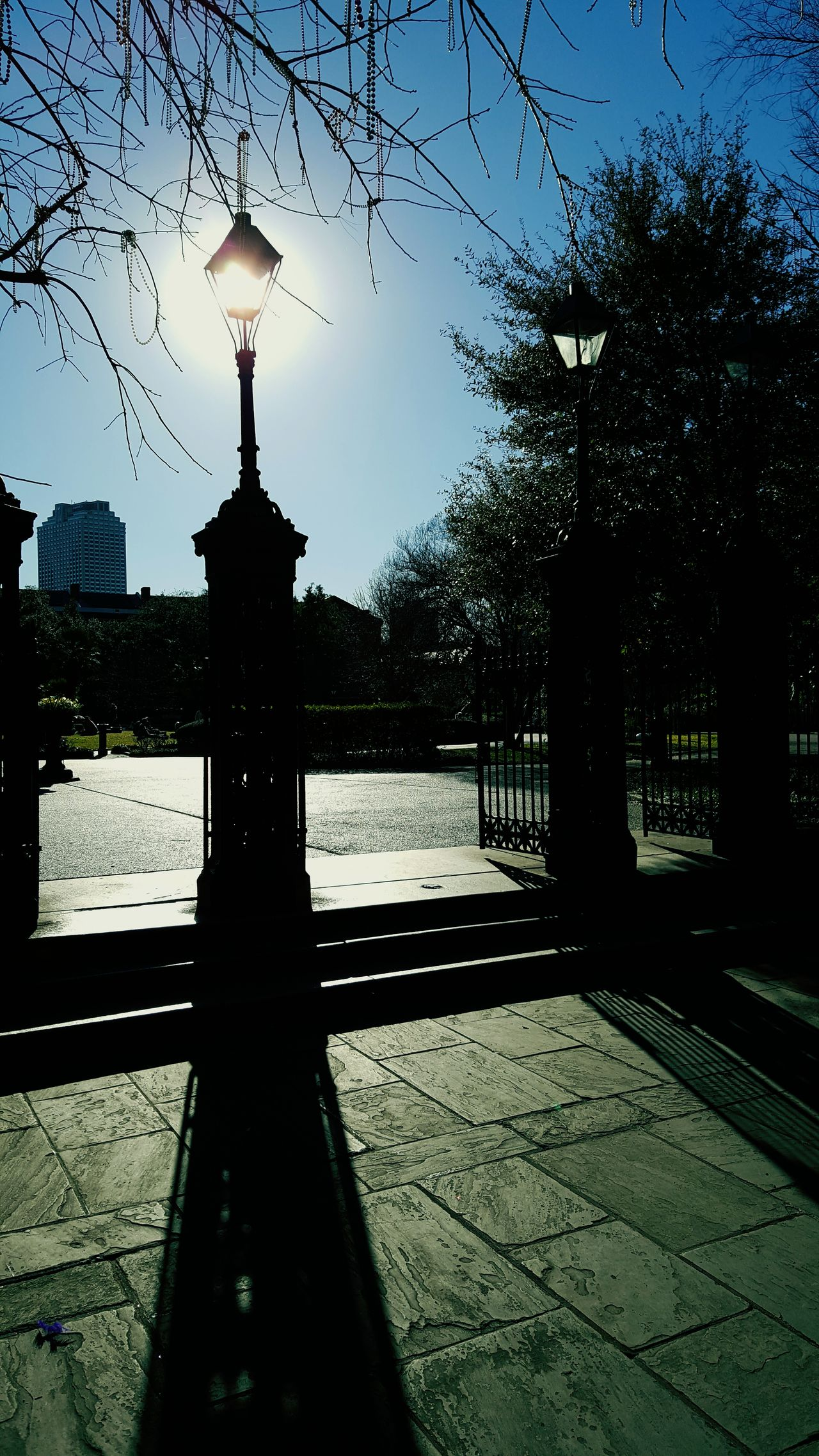 Lightpost Neworleans JacksonSqaure Jackson Square Gate Captured Light Light Wrought Iron Fence Fencepost Art Walk Sunshine