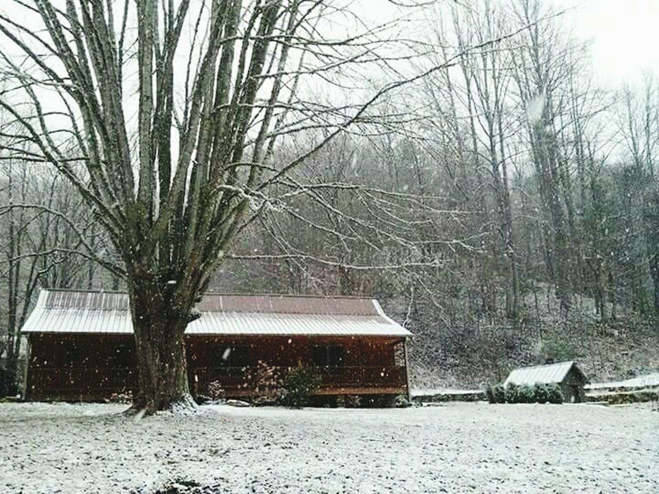 Myvacation Cabin Winterwonderland Wintertime Solace