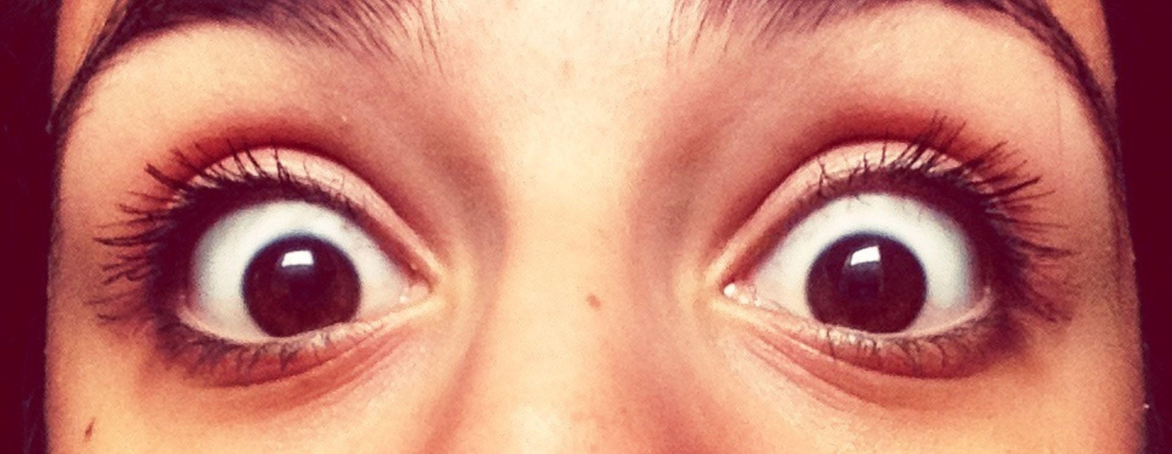 human eye, close-up, eyelash, looking at camera, portrait, sensory perception, eyesight, human face, part of, human skin, lifestyles, headshot, extreme close-up, young adult, iris - eye, front view, full frame