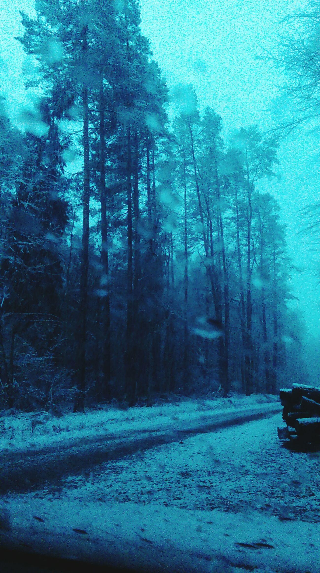Białe święta First Snow ♥ White Christmas