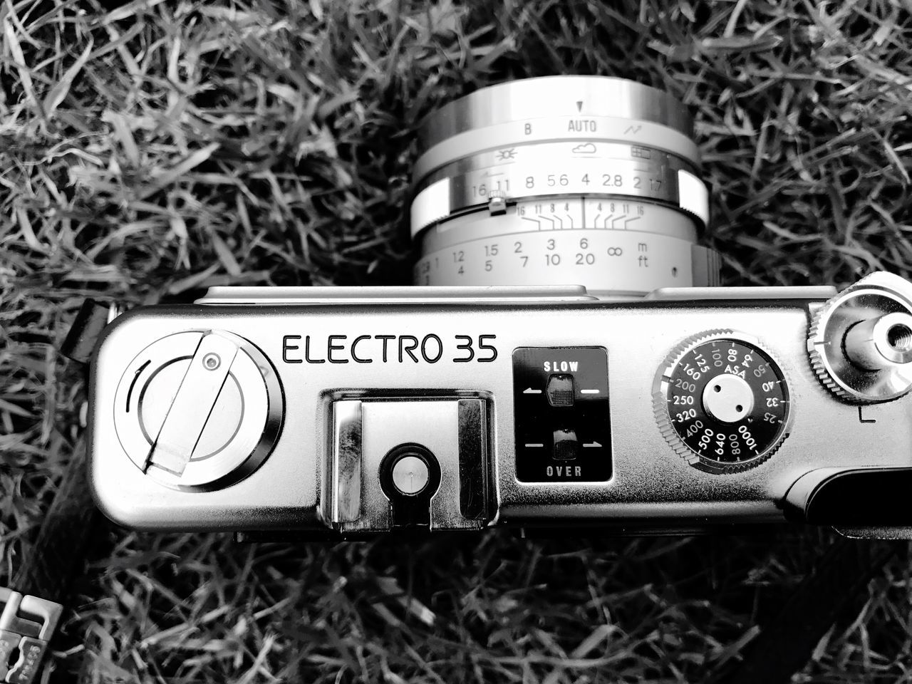 Yashica Electro 35 GSN Communication Text No People Close-up Day Technology Outdoors Grass Analogue Photography Lieblingsteil Electro Yashica