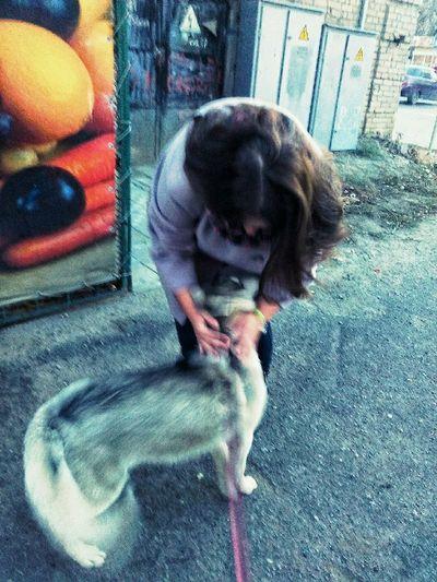 Taking Photos Taking Photos EyeEm Gallery Photo♡ Quality Time Street Photography Dog❤ Walking The Dog