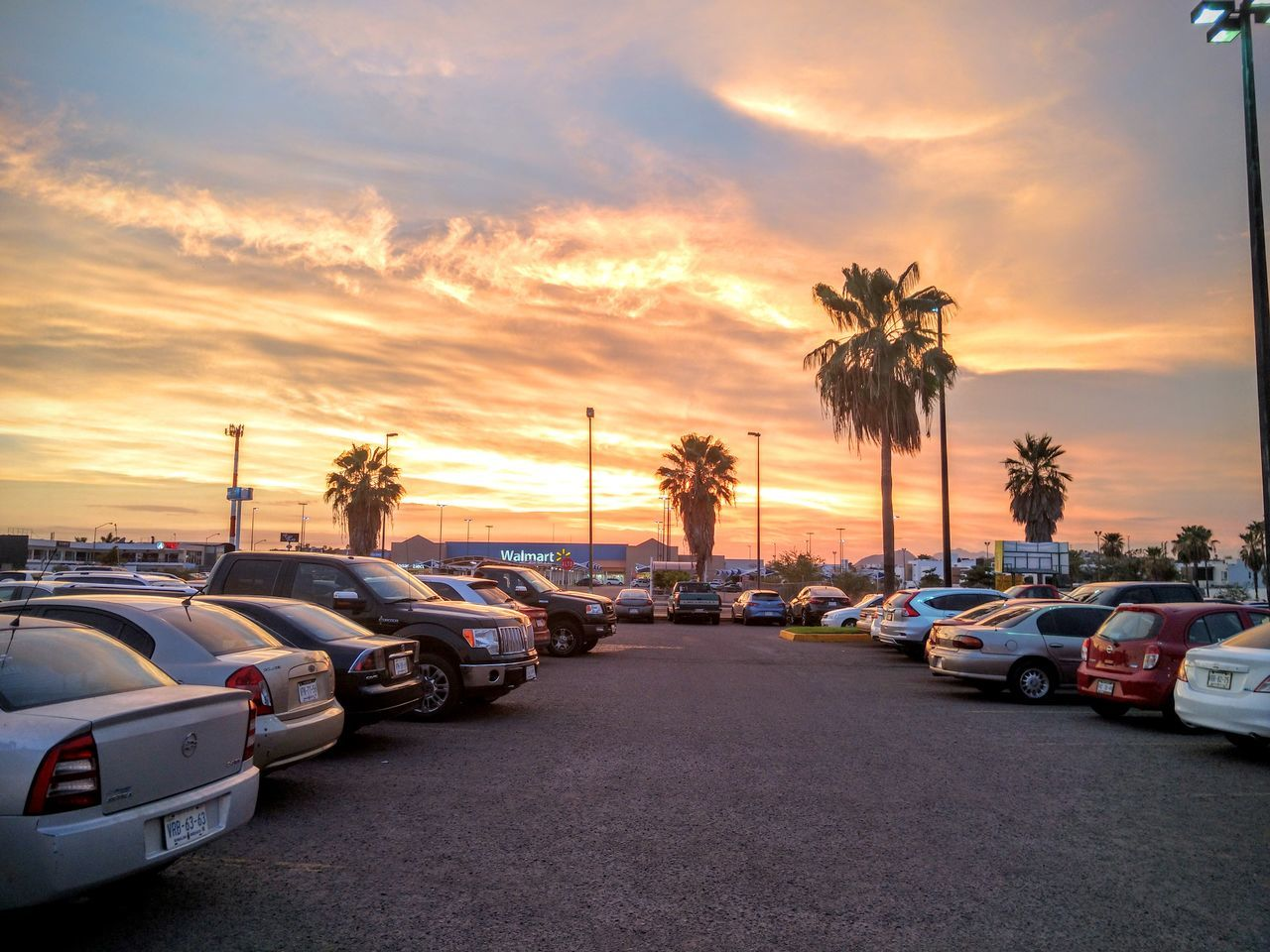 sunset, car, palm tree, sky, transportation, land vehicle, tree, mode of transport, no people, road, outdoors, cloud - sky, nature, beach, scenics, beauty in nature, day