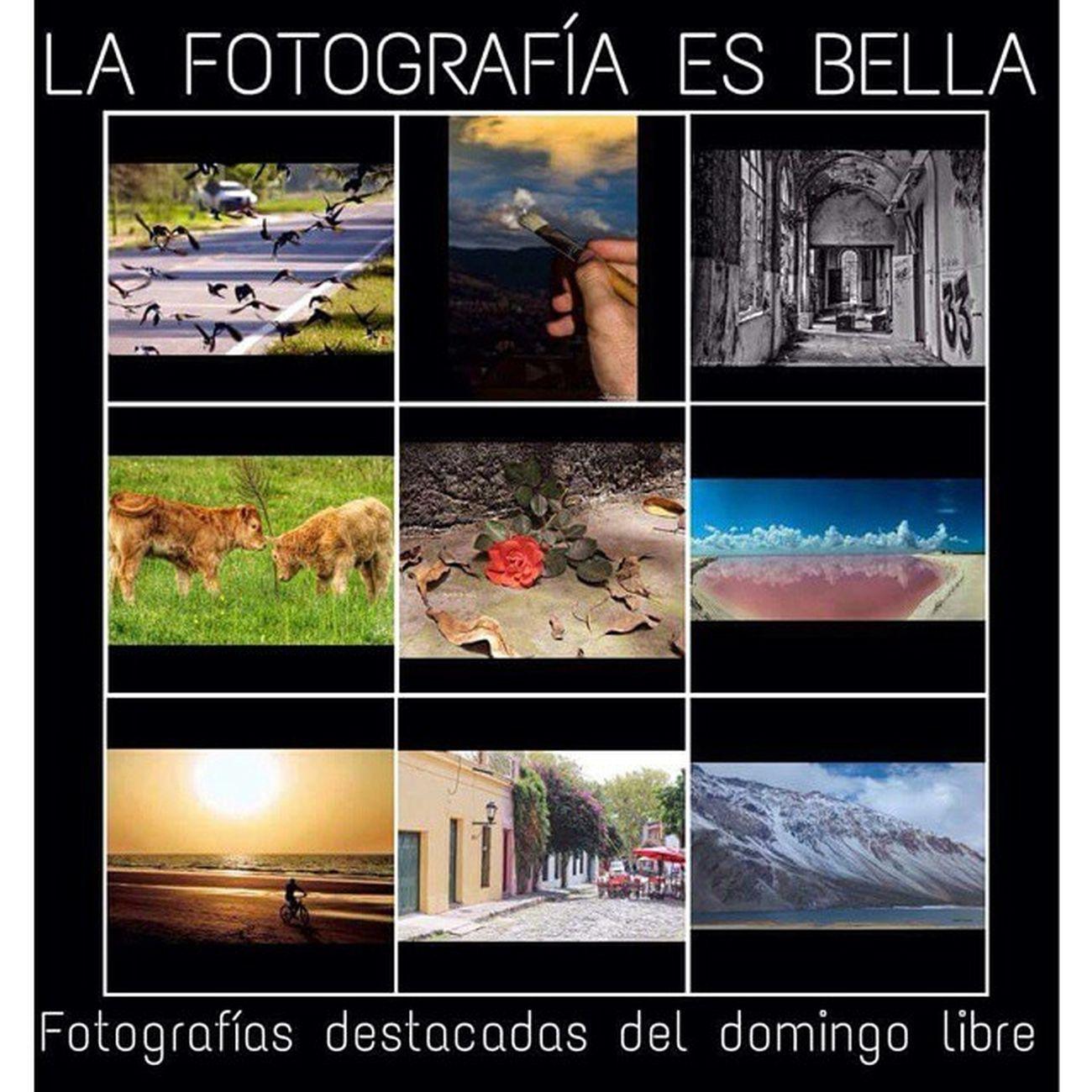 Squareinstapic 5dmarkll Canon CanonMexicana Rocafotografia Yúcatan Mimexico Mochileromx  Mexico HechoenMéxico Mimexico Luz Cámara Coloradas Premio
