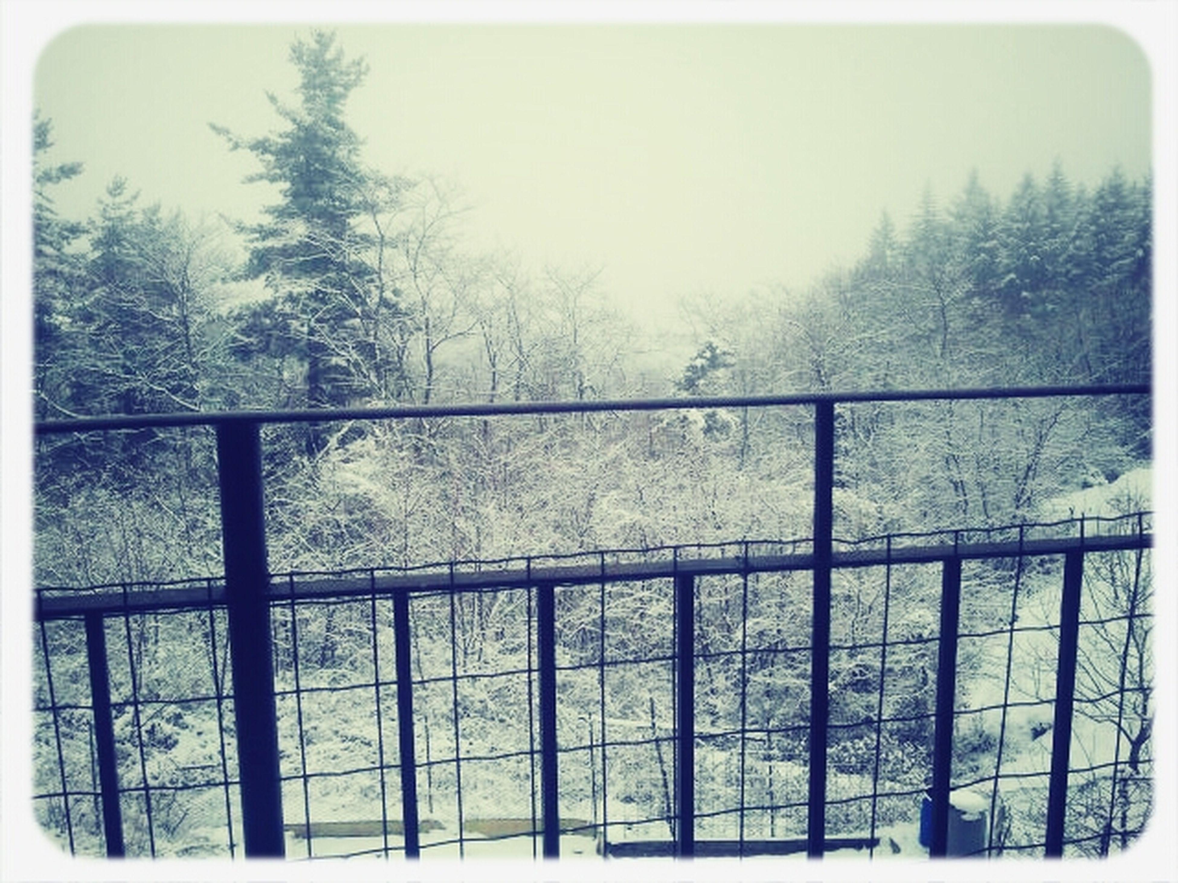 today.. :-) snowiiinnng Taking Photos Winter Photo Snow Photography Snowing Mobilephotography Mobilephoto