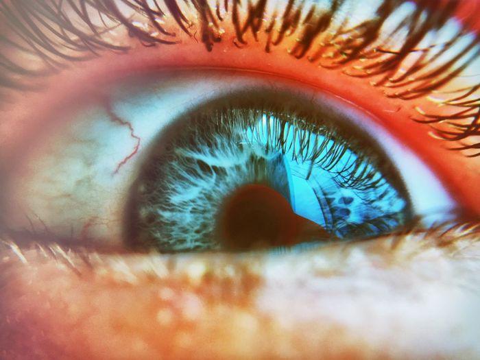 Eyesight Backgrounds Sensory Perception Human Eye Eyelash Full Frame Reflection Close-up Unrecognizable Person Macro Extreme Close-up Selective Focus Iris - Eye Vision Eyeball Person Nature Extreme Close Up