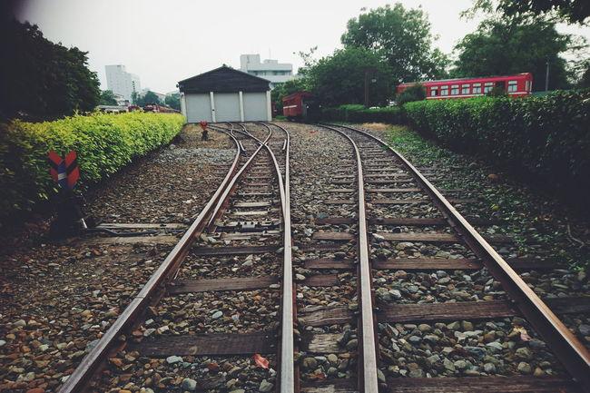 台灣 嘉義 阿里山 鐵道 鐵軌 Rail Train Taiwan SonyZ5 Stones View Retro Style Cellphone Photography